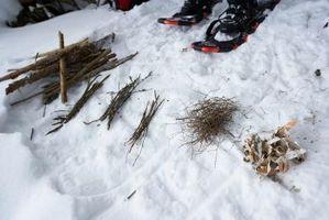 Come conservare Sticks & Branches per legna da ardere