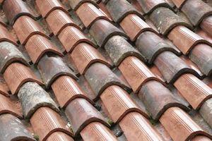 Il mio tetto perde Benne & My Walls sono peeling