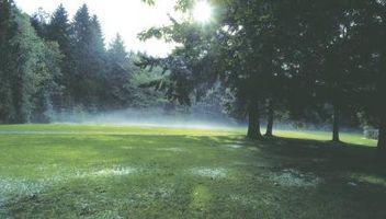 Come regolare la direzione dello spruzzo di un impulso Lawn Sprinkler