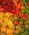 A proposito di verdure organiche