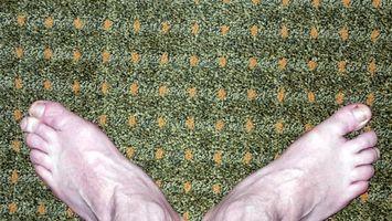 come togliere macchie di sangue da un tappeto