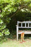 Ombra parziale Paesaggio Arbusti