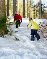 Come faccio ad avere Shine indietro sulla mia Pavimenti in legno se ho residui di sale e neve?