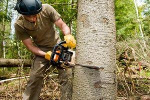 Strumenti Lumberjack