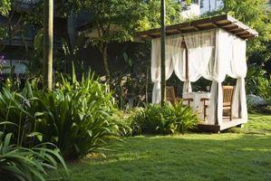 Come piantare un giardino a Greensboro, North Carolina