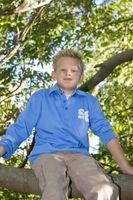 Giardinaggio per i bambini: in rapida crescita arrampicarsi sugli alberi alla pianta nel deserto