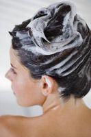 Come risolvere un Proheat Shampooer pennello Bissell che non si accende