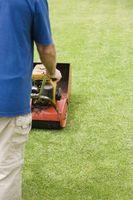 Attrezzatura Lawn-taglio