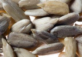 Estrazione dell'olio dai semi