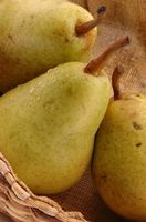 Alberi da frutto nano in Michigan