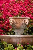 Come progettare un giardino con una fontana
