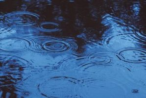 Come raccogliere acqua piovana per uso domestico