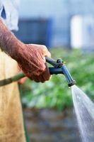 Sarà un impianto di irrigazione con diversi tipi di acqua avere un effetto?