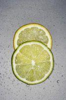 Citrus repellente per le pulci