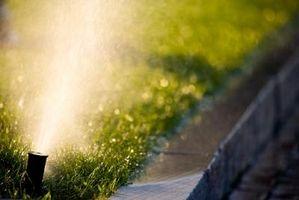 Come mantenere un Circling Rain Bird spruzzatore Da Irrigazione Alcune zone come una finestra del soggiorno