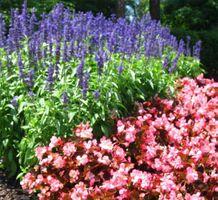 Idee in giardino & Outdoor Living