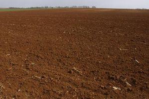 Gli effetti di fertilizzanti chimici sul suolo
