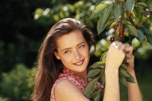 Bush Cherry Trees
