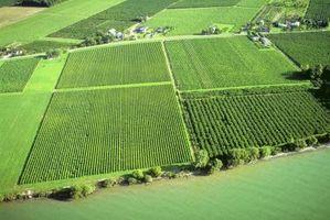 Come costruire un rullo suolo Agricoltura