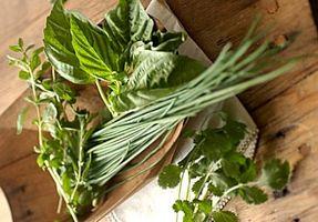 Come mantenere erbe fresche