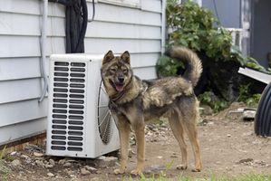 Come nascondere una unità di condizionatore d'aria esterna