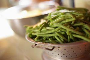 Varietà di fagioli verdi: Tendergreen