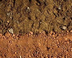 Quali sono le cause del suolo lisciviazione?