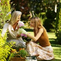 Come creare un giardino su un bilancio