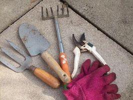 Strumenti per giardini domestici