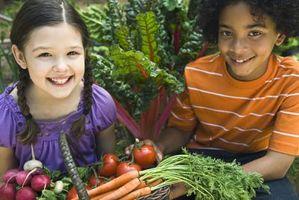 Come piantare un giardino alimentari