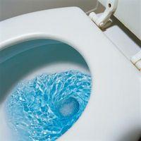 Che cosa rende Toilet Pipes Vibrazione & emettere suoni forte quando Giù per il tubo?