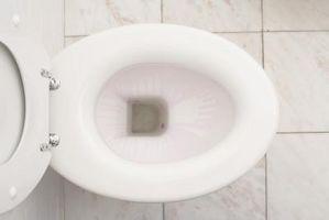 Come tagliare una vite da un serbatoio che contiene servizi igienici sul sedile del water