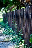Come pulire una recinzione di cedro con candeggina