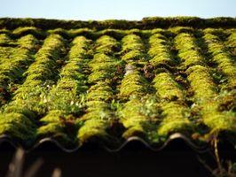 Come rimuovere Moss da un tetto casa