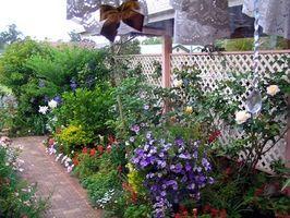 Idee Container Cottage vegetali per Ontario