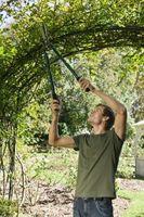 Fai da te Giardino Stick Arbor