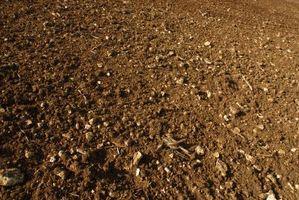 Strumenti per la raffinazione del suolo