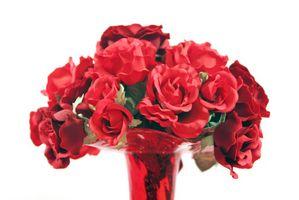 Tagliare Varietà Roses