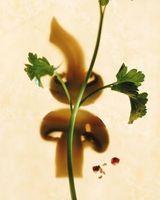 Come prendersi cura di e coltivare le erbe: Coriandolo, Basilico e origano