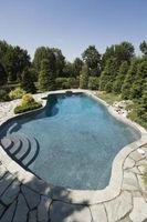 Non è necessario aggiungere Alghicida a una piscina con acqua salata sistema?