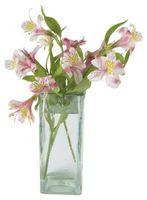 Come prendersi cura di un giglio Bouquet Cut
