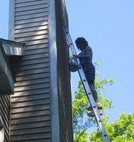 Come trovare Wasp nidi Prima di iniziare a dipingere